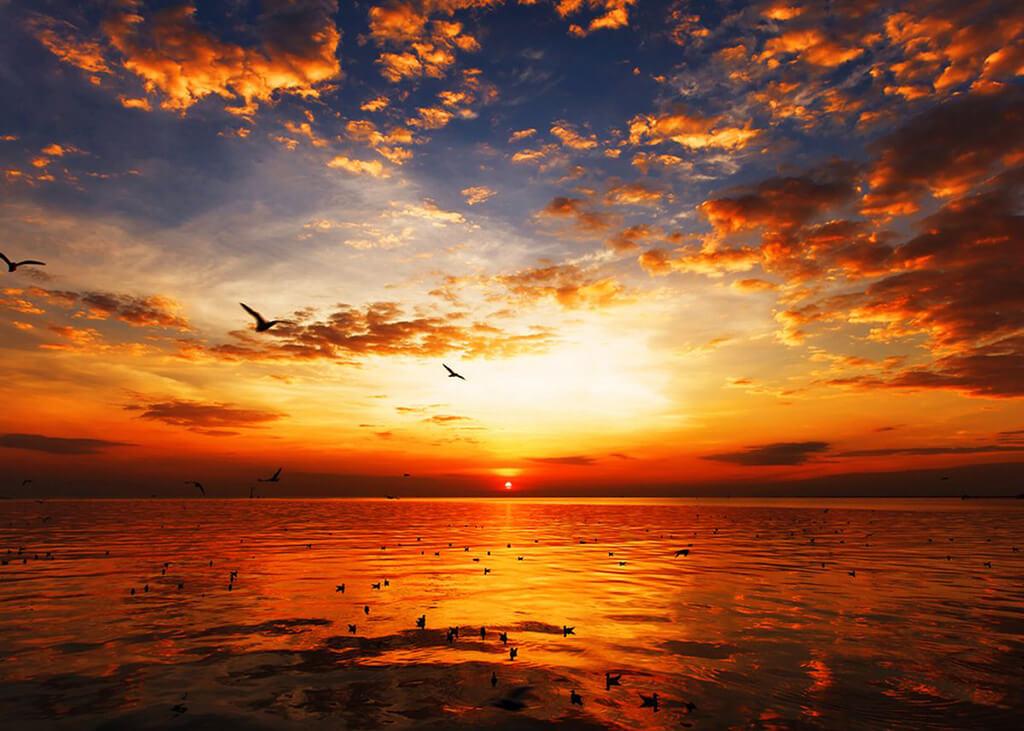 آب، پرتوهای نور خورشید را بازتاب میکند.